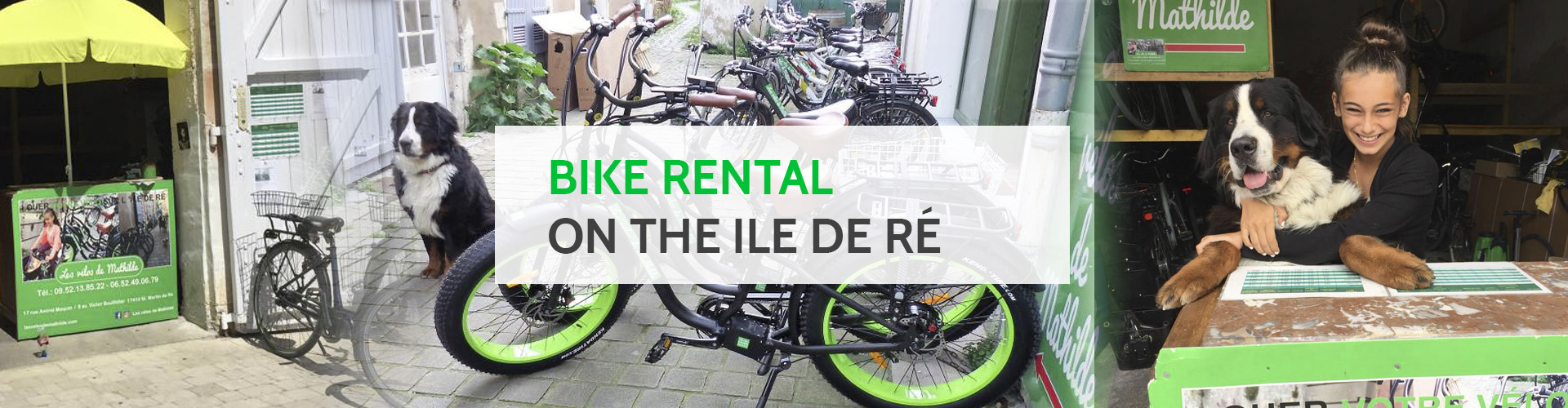 Bike rental on the ile de Ré